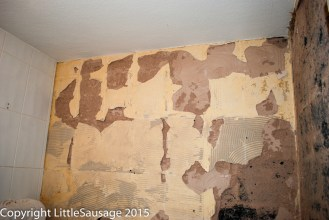The plaster on this wall is really crappy so it is coming off.