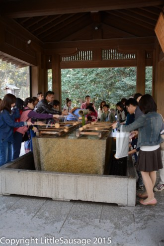 The crowds struggling to cleanse themselves before entering the shrine.