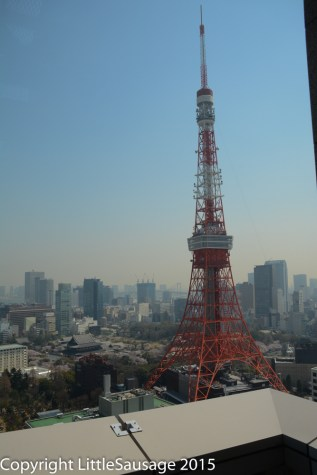 Tokyo Tower, of course.