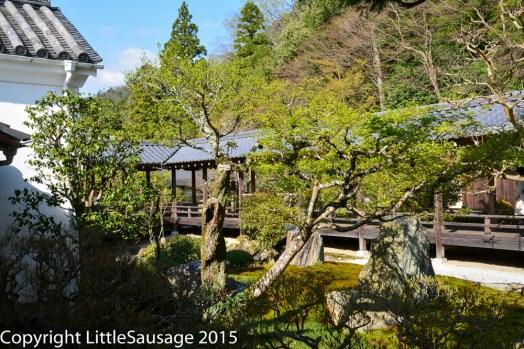 More Nanzen-ji gardens.