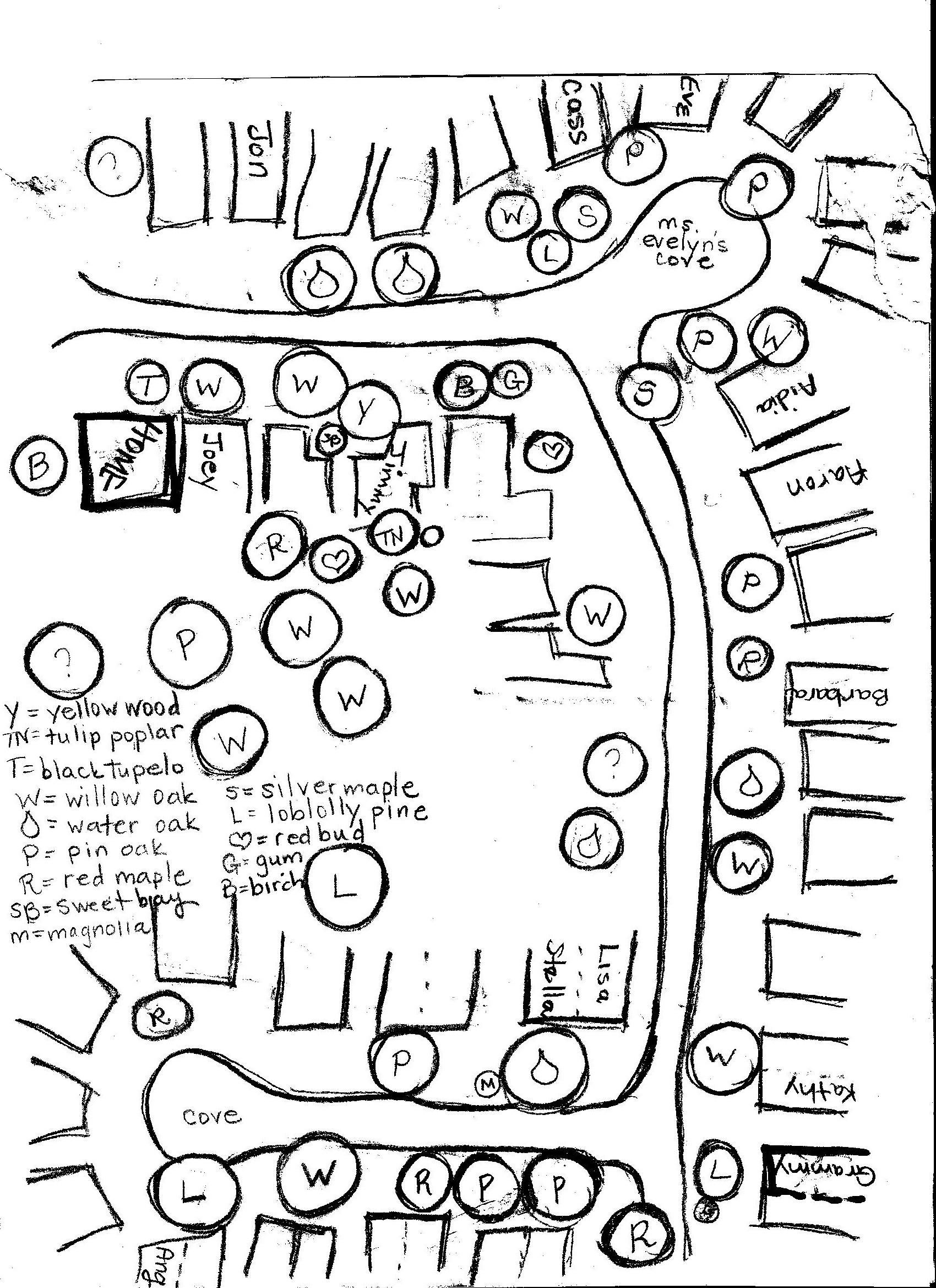 Neighborhood Tree Map