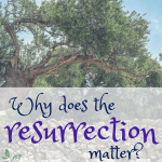 Why does the resurrection matter? #easter #biblestudy #devotional