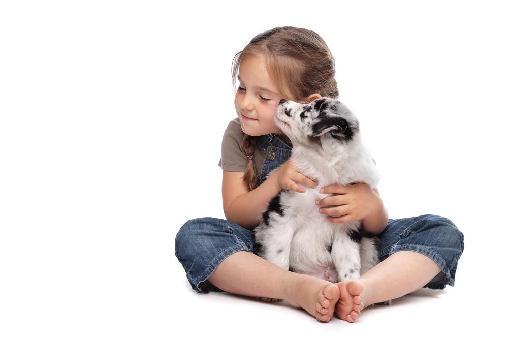how to help a child deal with pet death