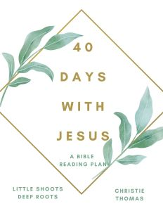 40 Days with Jesus reading plan cover