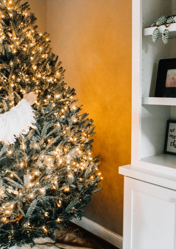 Why I Suggest Buying a Live Christmas Tree