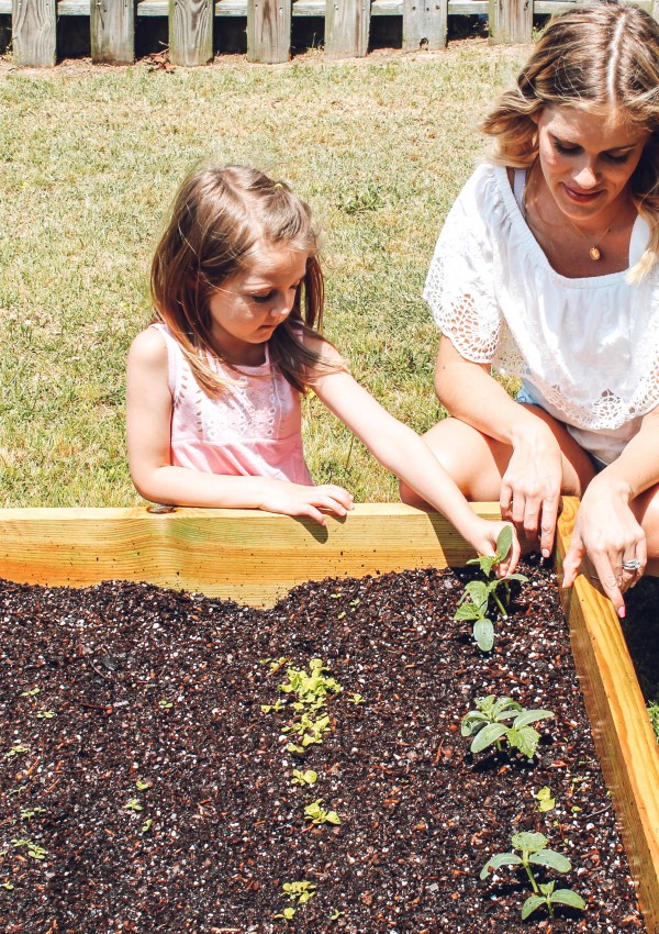 Raised Garden Beds and Our Love for Growing Our Food