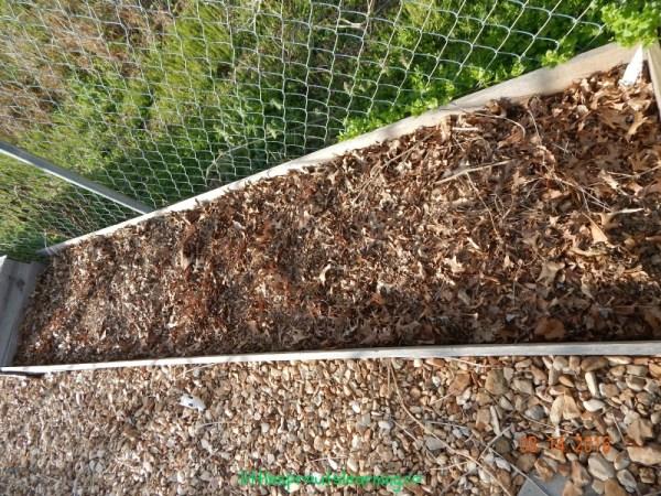 mulch garden free