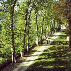 Le parc Buffon de Montbard vu d'en haut
