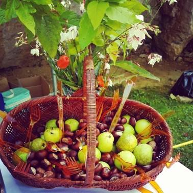 Décoration champêtre : pommes, noix, châtaignes et autres fruits de la forêt