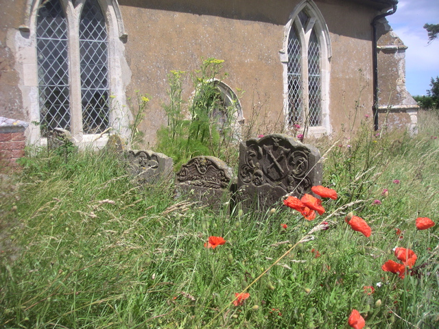Church, Poppies