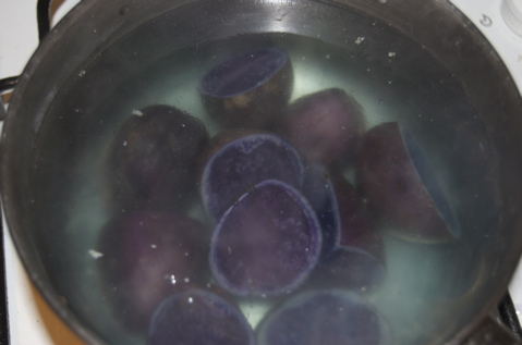 Blue Potatoes - 3