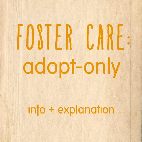 adoptonly