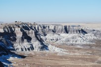 Petrified Forest (2)