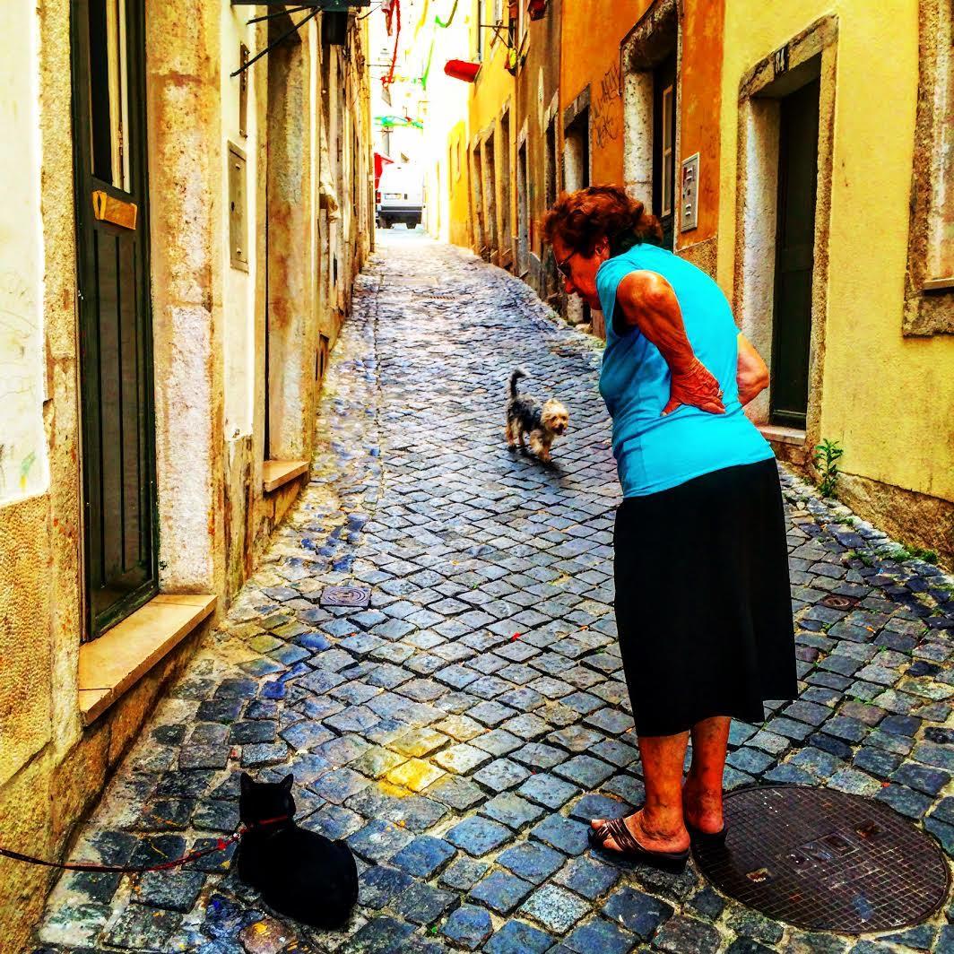 The Blue Stones of Lisbon