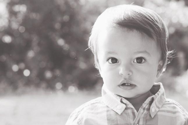 European infant formula fed baby. Holle 1. Little World Organics