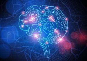 Откриха физическия източник на тревожността в мозъка