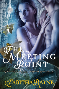 The Meeting Point Cover