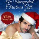 An Unexpected Christmas Gift by Cameron Allie Cover