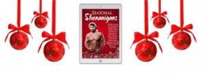 Seasonal Shenanigans graphic with Christmas decorations