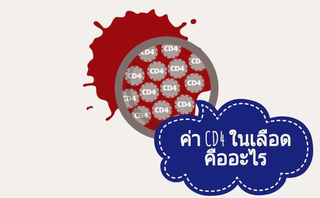 ค่า CD4 ในเลือดคืออะไร