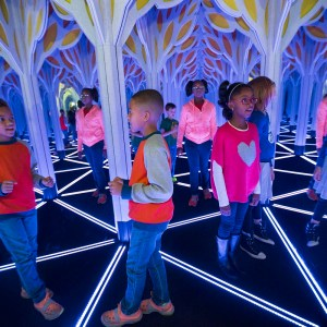 Several African American children stand in the Mirror Maze looking at their reflections. The mirrors are anchored by elaborate ooking tree like structures and geometrical shapes on the floor.