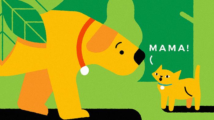 Les chiens ne font pas des chats, l'expression avec le mot chat la plus en vogue chez les parents