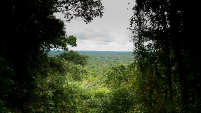 Beautiful Places In The World — Yasuni National Park