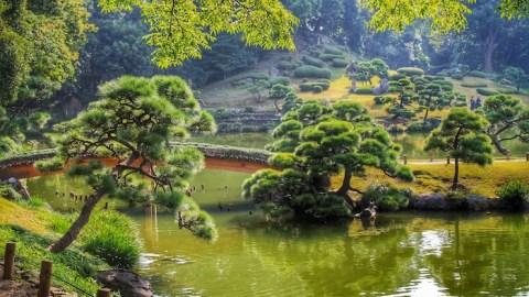 Le differenze culturali che ci separano dal Giappone