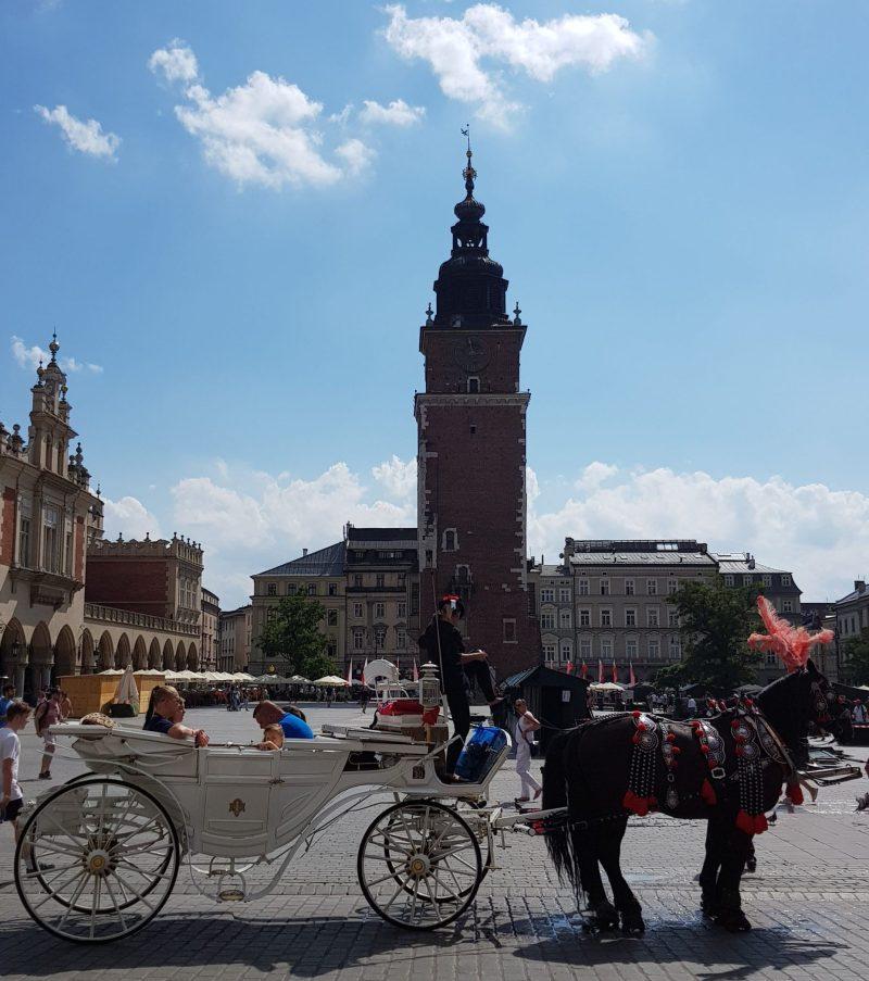 Poland, krakow, main square, horses, Poland