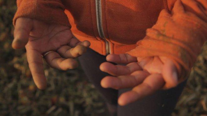 Rape in the Fields - hands photo