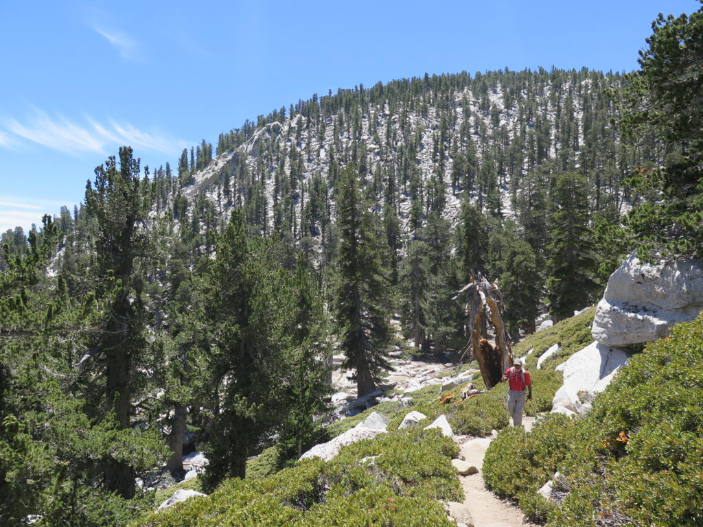 On the San Jacinto trail