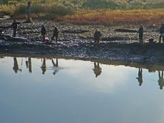 Fishing Reflections Highlights