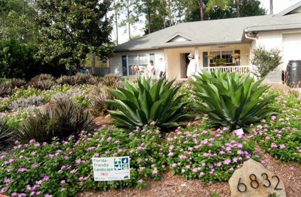 homeowner association florida