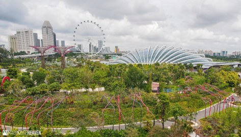 Singapore - 0003