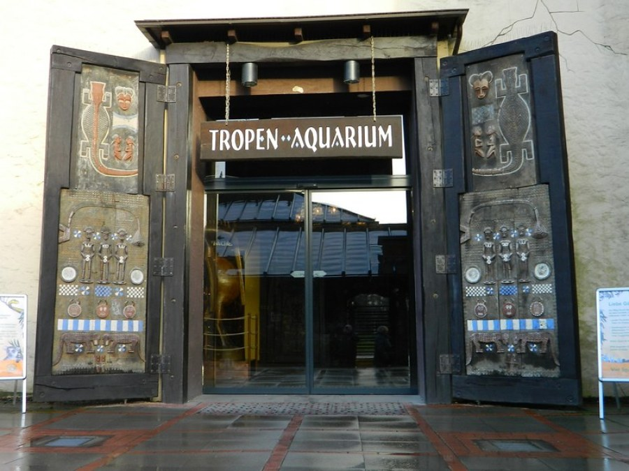 Hagenbeck Aquarium| foto met dank aan Allan Watt