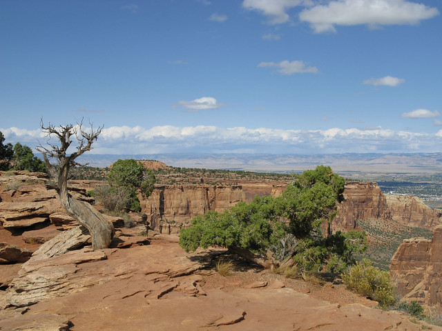 Colorado National Monument-2979