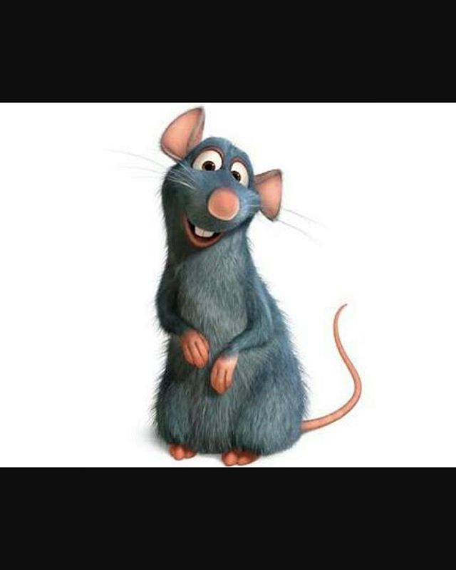 Gambar Tikus Animasi : gambar, tikus, animasi, Seekor, Tikus