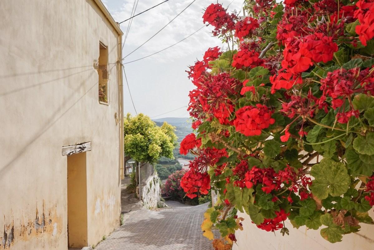 Asuminen suositussa lomakohteessa - Platanias, Kreeta