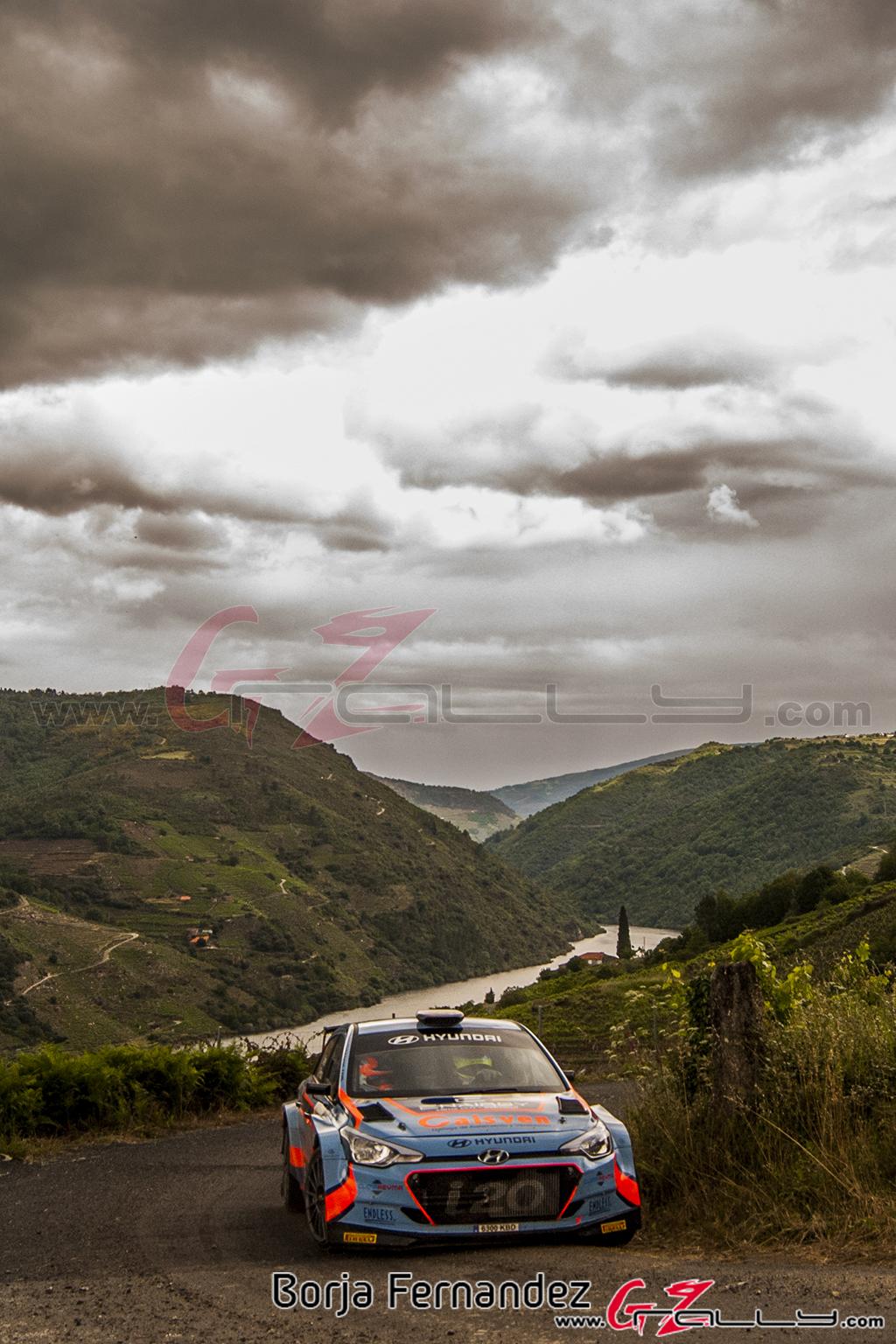 Rally_Ourense_BorjaFernández_18_0009