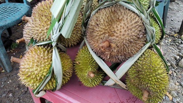 The food we'll miss most from Sulawesi: durian by bryandkeith on flickr
