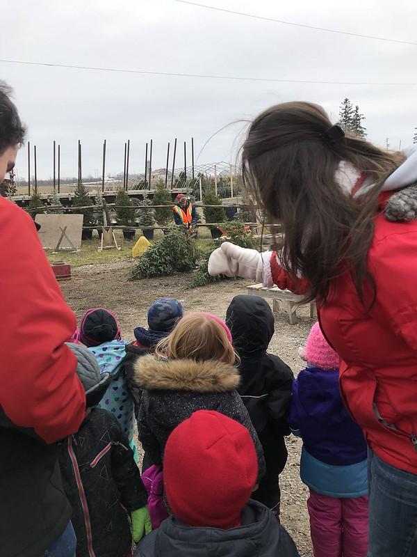 Field trip to a Christmas tree farm