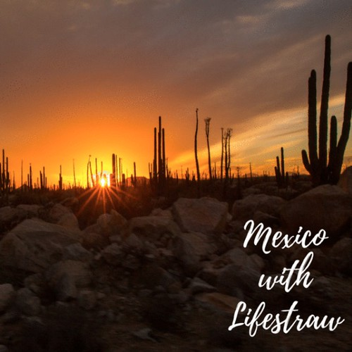 Win A Trip To Mexico With Lifestraw!