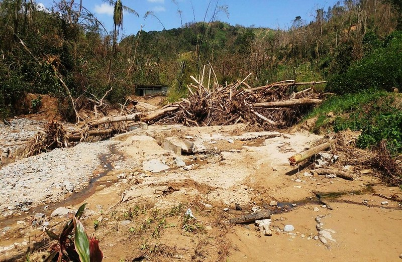 Camino obstruido en Utuado