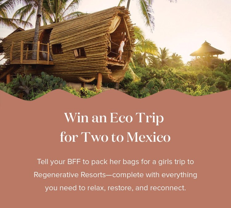 Win An Eco Trip To Mexico!