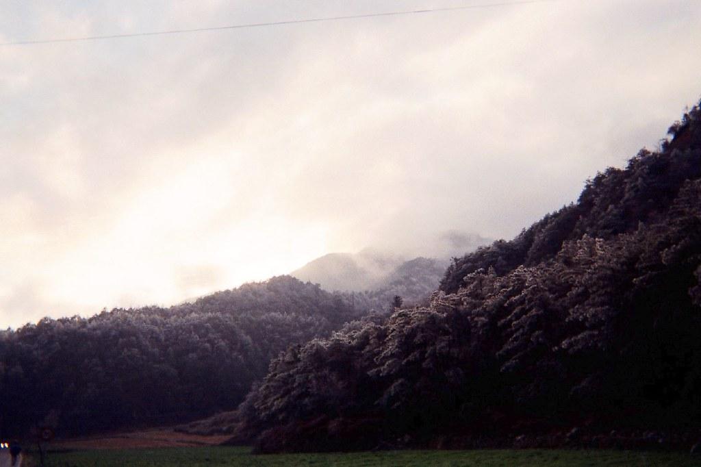 思源啞口 | 20070128-29武陵 | PeiWen Chang | Flickr