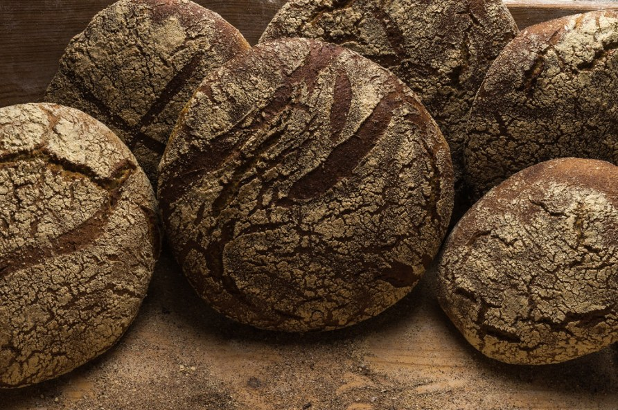 Bakery - gold rustic crusty loaves of bread