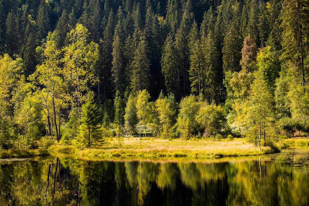 Elbachsee Black Forest Germany  Roman Boed  Flickr