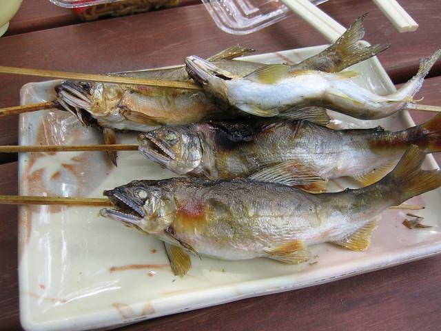 Ayu,River fish 鮎