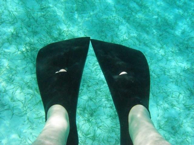 Feet in Castaway Cay Waters