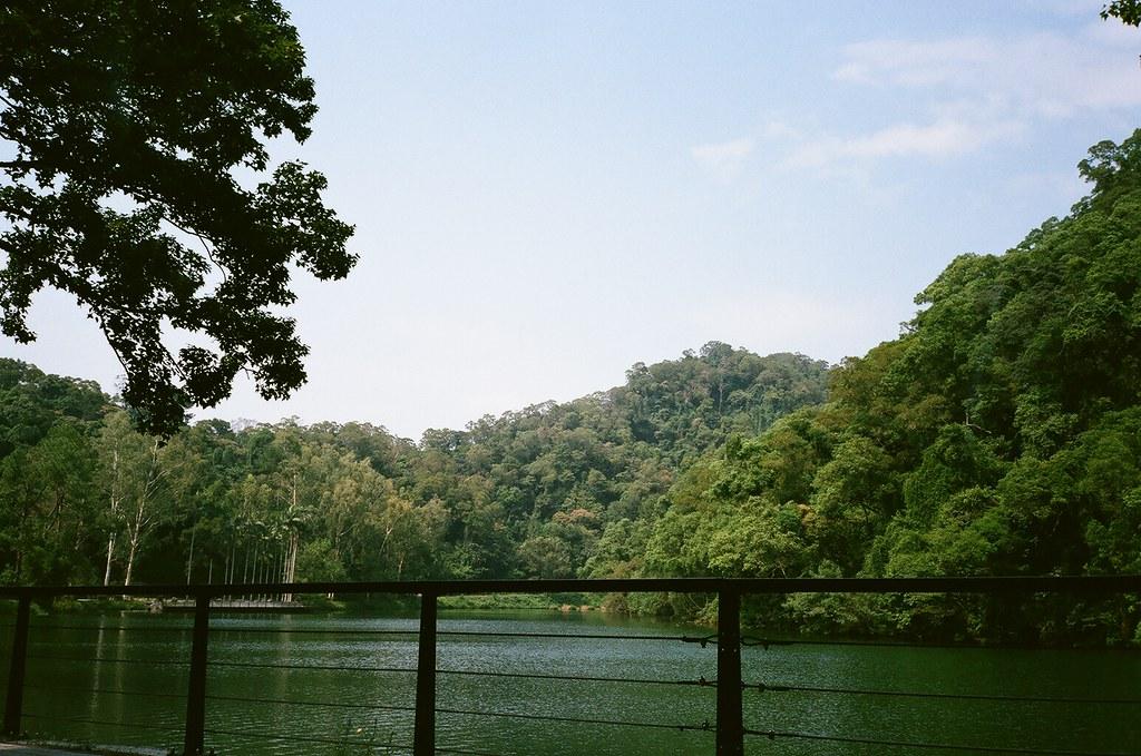Back Cihu Lake 後慈湖   Flickr